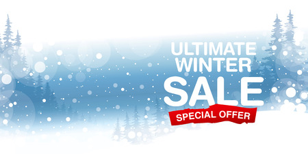 tally: Ultimate Winter sale poster