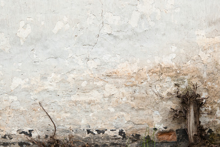 cranny: old white cracked wall primed