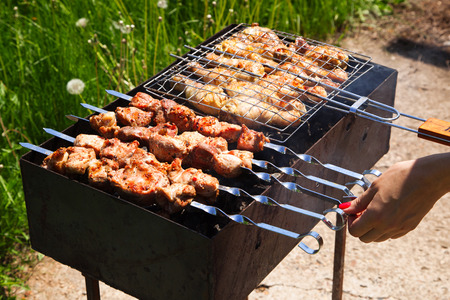 grilled meat over a braizer on the nature