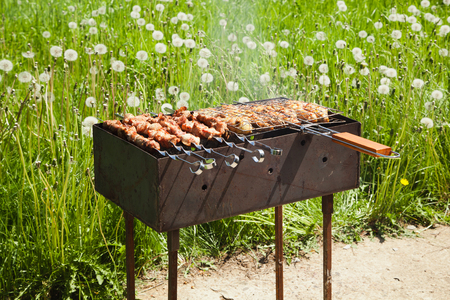 broil: grilled meat over a braizer on the nature