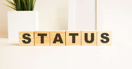 Wooden cubes with letters on a white table. The word is STATUS. White background with photo frame, house plant.