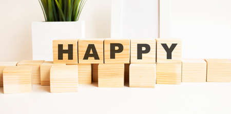 Wooden cubes with letters on a white table. The word is HAPPY. White background with photo frame, house plant.