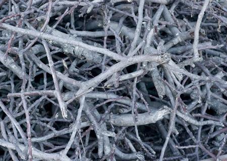 brushwood: grey and brown dry brushwood heap