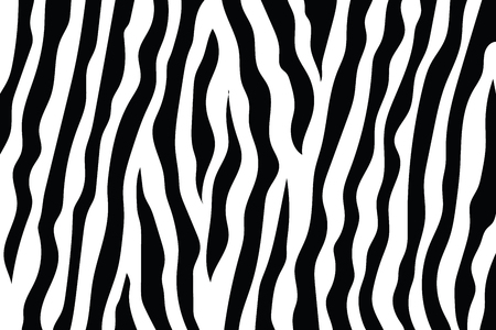 Zebra Stripes Pattern. Zebra print, animal skin, tiger stripes, abstract pattern, line background, fabric. Amazing hand drawn vector illustration. Poster, banner. Black and white artwork monochrome