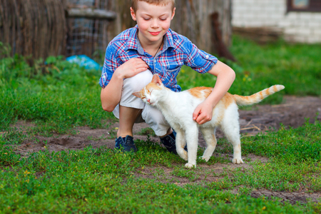 amigos abrazandose: Ginger cat tenderly rubs against the foot of a little boy Foto de archivo