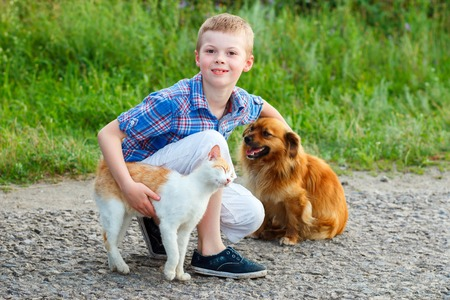 smiling little boy with a cat and a dog sitting on the road, the guy stroking a dog, a cat rubs against the leg of the child Imagens