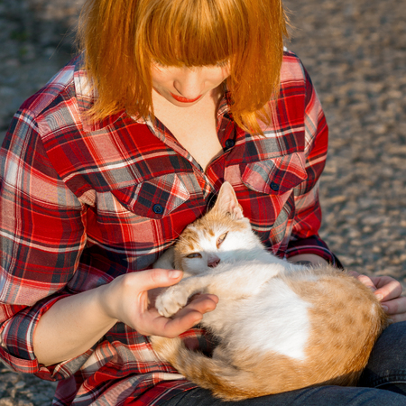 curled up: Redhead girl in a plaid shirt holding a cat in her arms, a cat curled up and looking at the camera