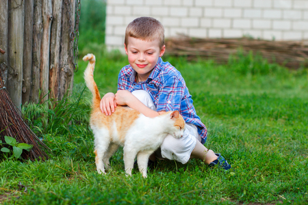 ginger cat: Ginger cat tenderly rubs against the foot of a little boy Stock Photo