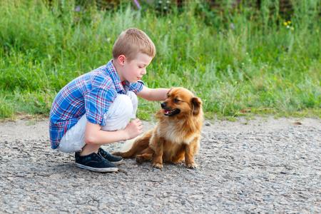 stroking: little boy in a plaid shirt stroking a red dog. Best friends. Outdoor