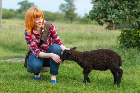 ovejitas: ovejas morder el dedo de una niña pelirroja linda Foto de archivo