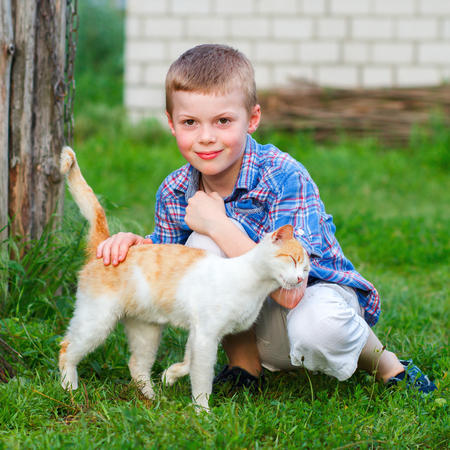 Red cat tenderly rubs against the hand of a little boy Stock Photo