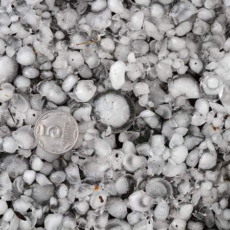 hail sized with a larger coin, hailstones on the ground after hailstorm, hail of great size Imagens - 119201717