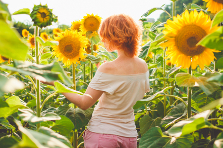 young redheaded woman in a field of sunflowers stands back, rear view, sunset light, sunset in a field of sunflowers