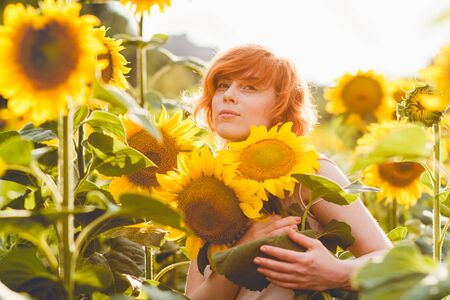 young redheaded woman in the field of sunflowers holding a huge bunch of flowers in a sunny summer evening Imagens