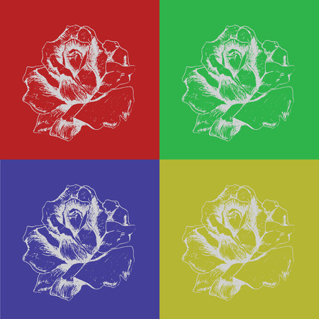 sketchbook: Rose from sketchbook