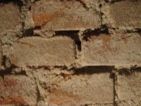 Brick wall Stock Photo - 17255982