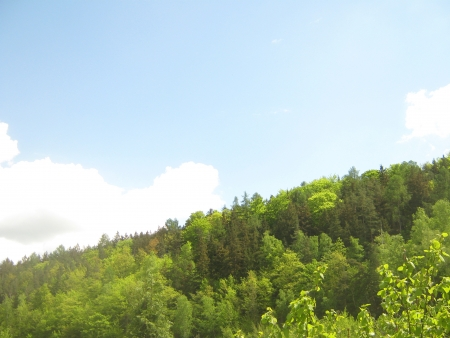 Forested hill on the horizon  Stock Photo
