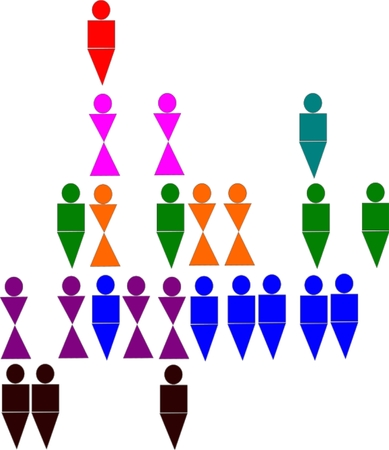 replication: Five levels of multi level marketing replication