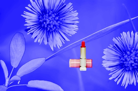 weaknesses: Decorative cosmetics illustration collage