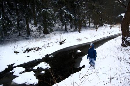 rivulet: Frozen creek. Photographed February 8, 2015 in 13-14 hours. Bojov, Central Bohemia, Czech Republic