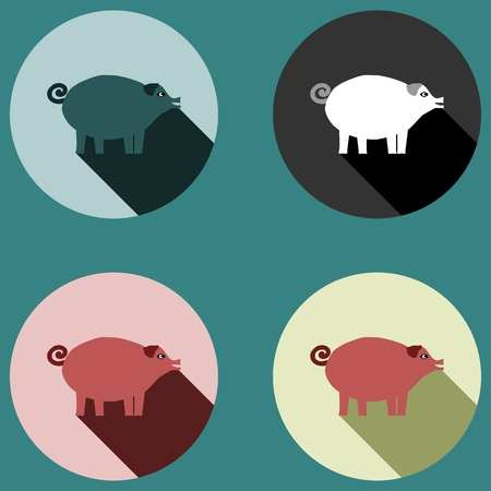 sincere: Pig with long shadow - four colored variations Illustration