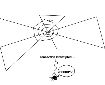 collisions: Spider fell from the network - connection is interrupted