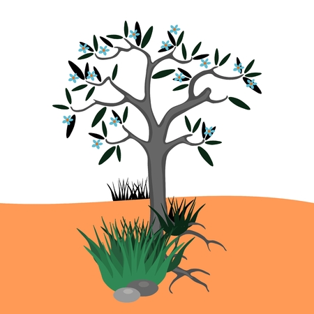 Lonely blossoming tree in the middle of the desert Vector