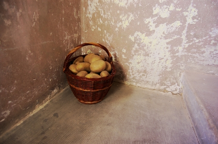 functionalism: Retro stylized photo of raw potatoes in wicker basket front grunge wall