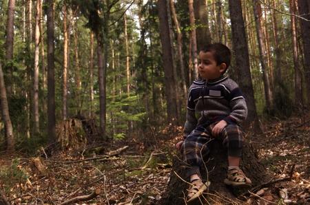 educacion ambiental: Ni�o sentado en un toc�n de �rbol en el bosque Foto de archivo