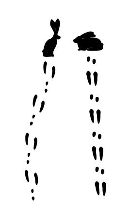 lapin silhouette: silhouette de lapin et lièvre et comparer les impressions pattes