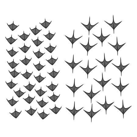 vogelspuren: Einfache Formen von Ente und Gans Fußabdrücke Illustration