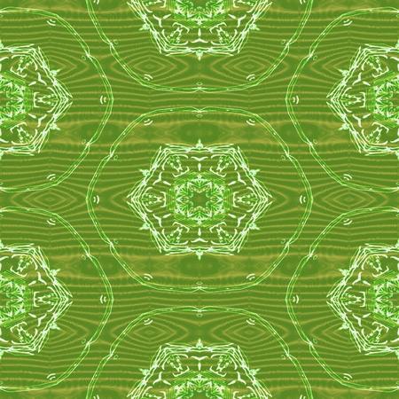 gossamer: Green white seamless gossamer lace pattern Stock Photo