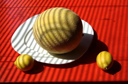 louver boards: Retro stylized still life of yellow sugar melon on white square plate  with two lemons on red tabletop. Striped cubist effect of jalousie.