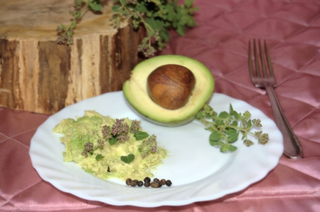 wild marjoram: Halved avocado with seed, avocado cream with pepper and oregano, on a white porcelain plate, retro still life.