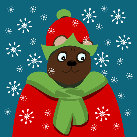 bust of a smiling bear dressed in red and green in snow blizzard Illustration