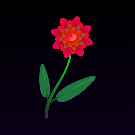 Beautiful red peony flower on a dark background. Illustration