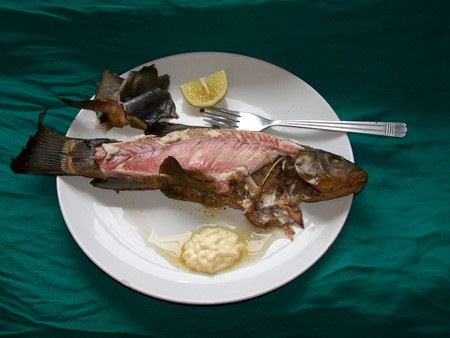 Tench - roast fish, skin removed, on a platter with mayonnaise and a quarter of lemon, during the meal, tasty and healthy