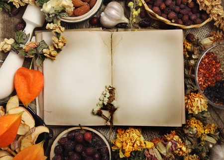 Empty cookbook, dried fruits, dry flowers and seasoning photo