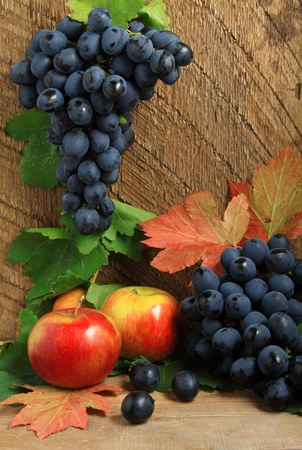 bunch up: Still life with ripe apples, autumn leaves and bunch of grapes Stock Photo