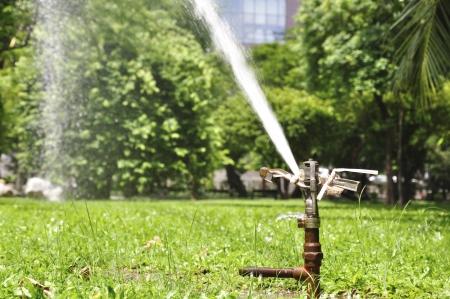 springer: Springer Faucets