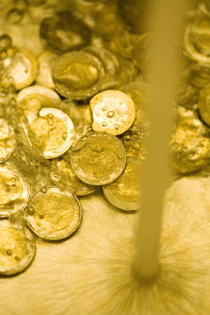gold metal: Euro coins under a running tap of water