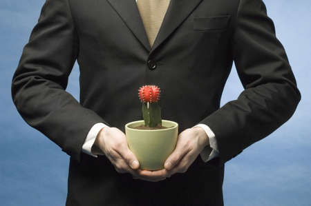 Midsection of businessman holding cactus in a pot Stock Photo - 3193304