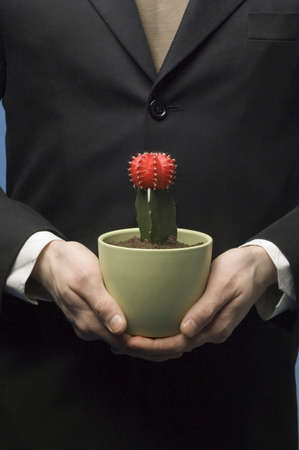Midsection of businessman holding cactus in a pot Stock Photo - 3193360