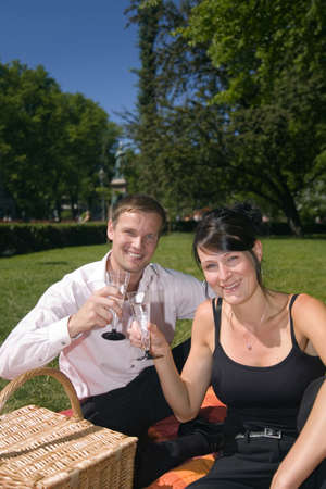 Couple having a toast in the park Stock Photo - 3193494