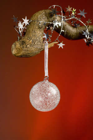 Christmas bauble hanging on a tree branch Stock Photo - 3193607