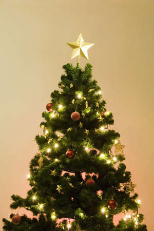 Christmas tree Stock Photo - 3193631