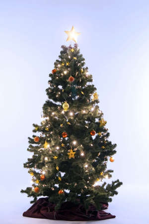 Christmas tree with lightings Stock Photo - 3193637