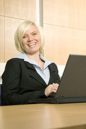 Businesswoman working on her laptop Stock Photo - 3193956