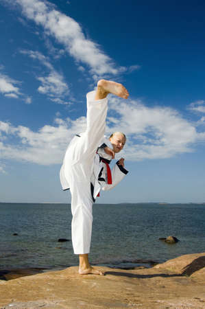 Woman giving a high kick Stock Photo - 3193994