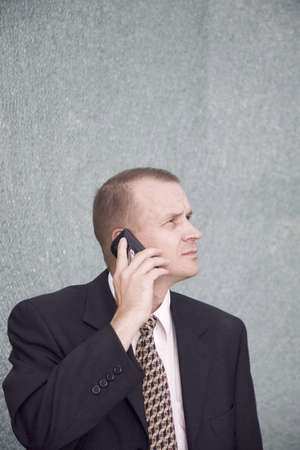 Businessman talking on the mobile phone LANG_EVOIMAGES